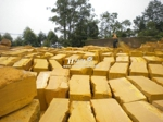 yellow-sandstone-th-05
